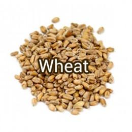 Солод Wheat